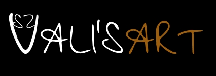 valisart_logo